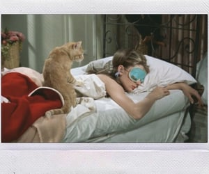 audrey hepburn, holly golightly, and breakfast at tiffany's image
