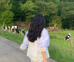 animals, cows, and fashion image