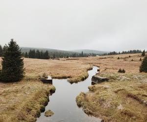 autumn, river, and czechia image