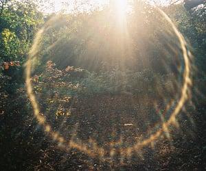 nature, sun, and light image
