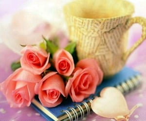 book, lovely, and roses image