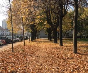 November 2020, Italy. I like staying at home, but I enjoy walking around my city. I miss that freedom.