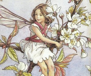 fairy and flowers image