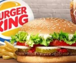 burger king ipo, burger king ipo review, and burger king ipo analysis image