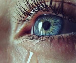 eyelashes, blue, and blue eyes image