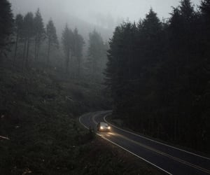 forest, aesthetic, and car image