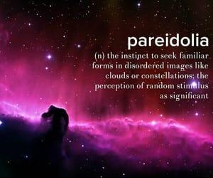 instinct, perception, and familiar image