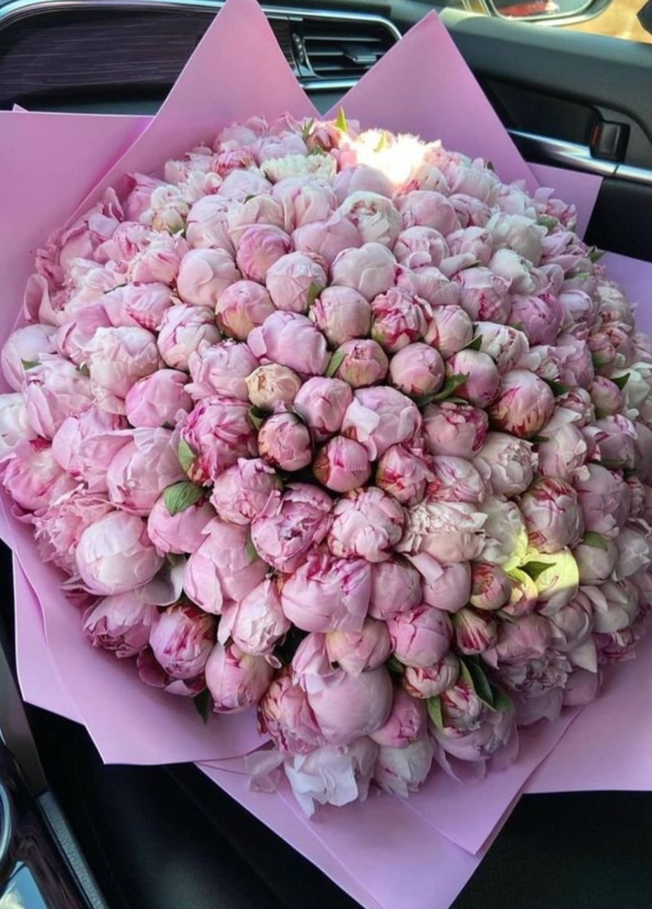 fashion, pink peonies, and flower image