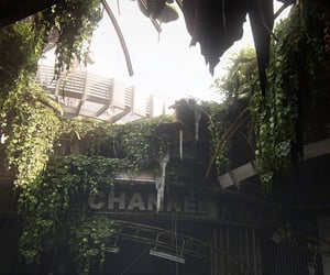 abandoned, dystopian, and flora image