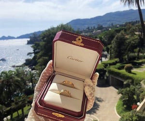 cartier and nature image