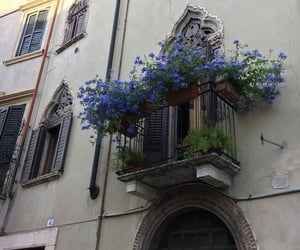 flowers, balcony, and blue image