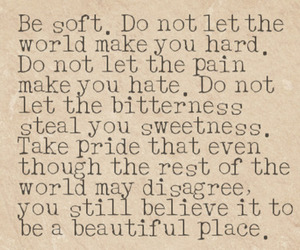 beautiful, quote, and world image