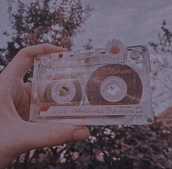 album, article, and eden image