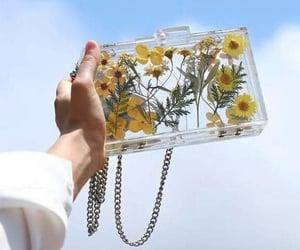 bag, fairy, and fairytale image