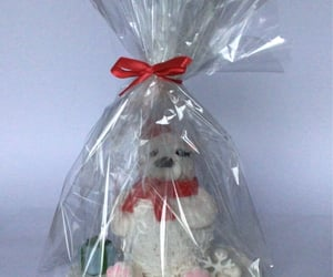 bear, gift wrapped, and cakes image