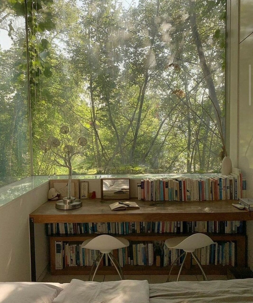 book, home, and nature image