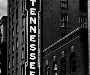 black and white, travel, and cities image