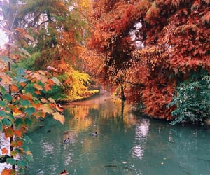 autumn, fall, and italy image
