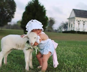 baby, goat, and nature image