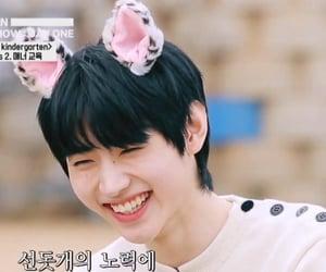 catboy, lq, and sunghoon image