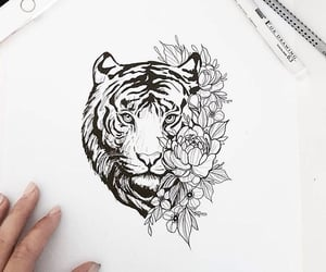 beautiful, cool, and drawing image