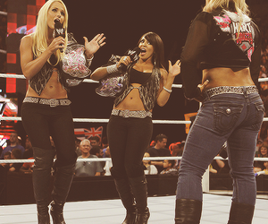 Layla, michelle mccool, and wwe image