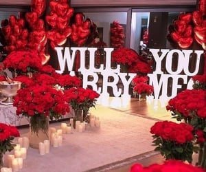 luxury, flowers, and red image