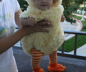 baby, cute, and duck image