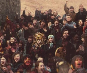 gryffindor, lion, and hermione image