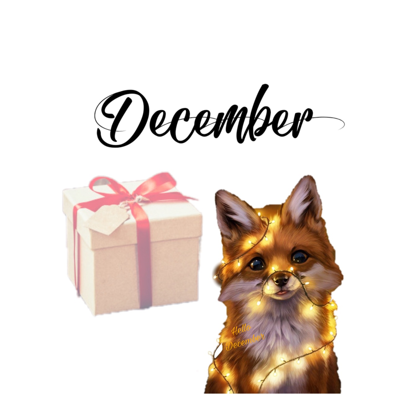 december, photography, and hello image