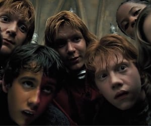 fred and george, harry potter, and hermione granger image
