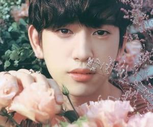 -JinYoung 🤍