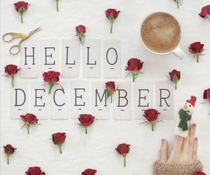 coffee, cup of coffee, and december image