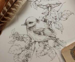 bird, mushroom, and drawing image