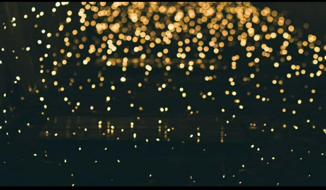 lichter and leuchten image