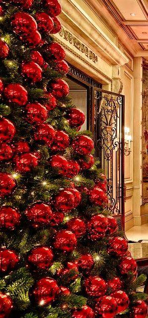 christmas tree, holiday, and christmas image