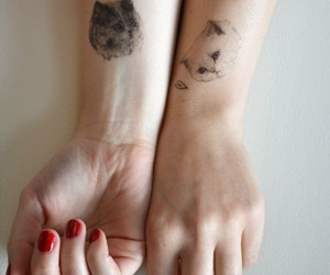 cats and tattoo image