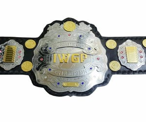 sports, wrestling, and championship image
