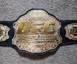 fighting, UFC, and wrestling image
