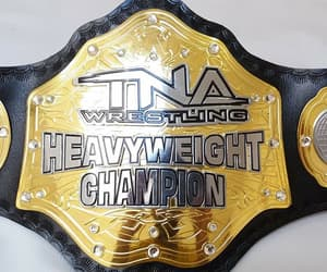 championship, fighting, and games image