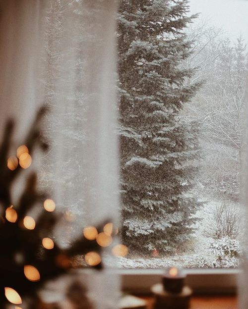 christmas, snow, and snowing image