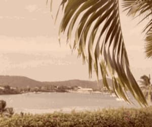 beach, gif, and vintage image