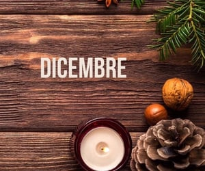 december, winter, and dicembre image