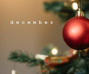 christmas, natale, and december image