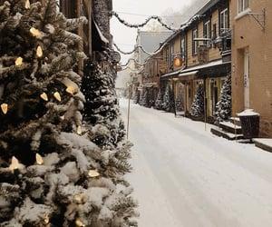 christmas tree, winter, and holiday image