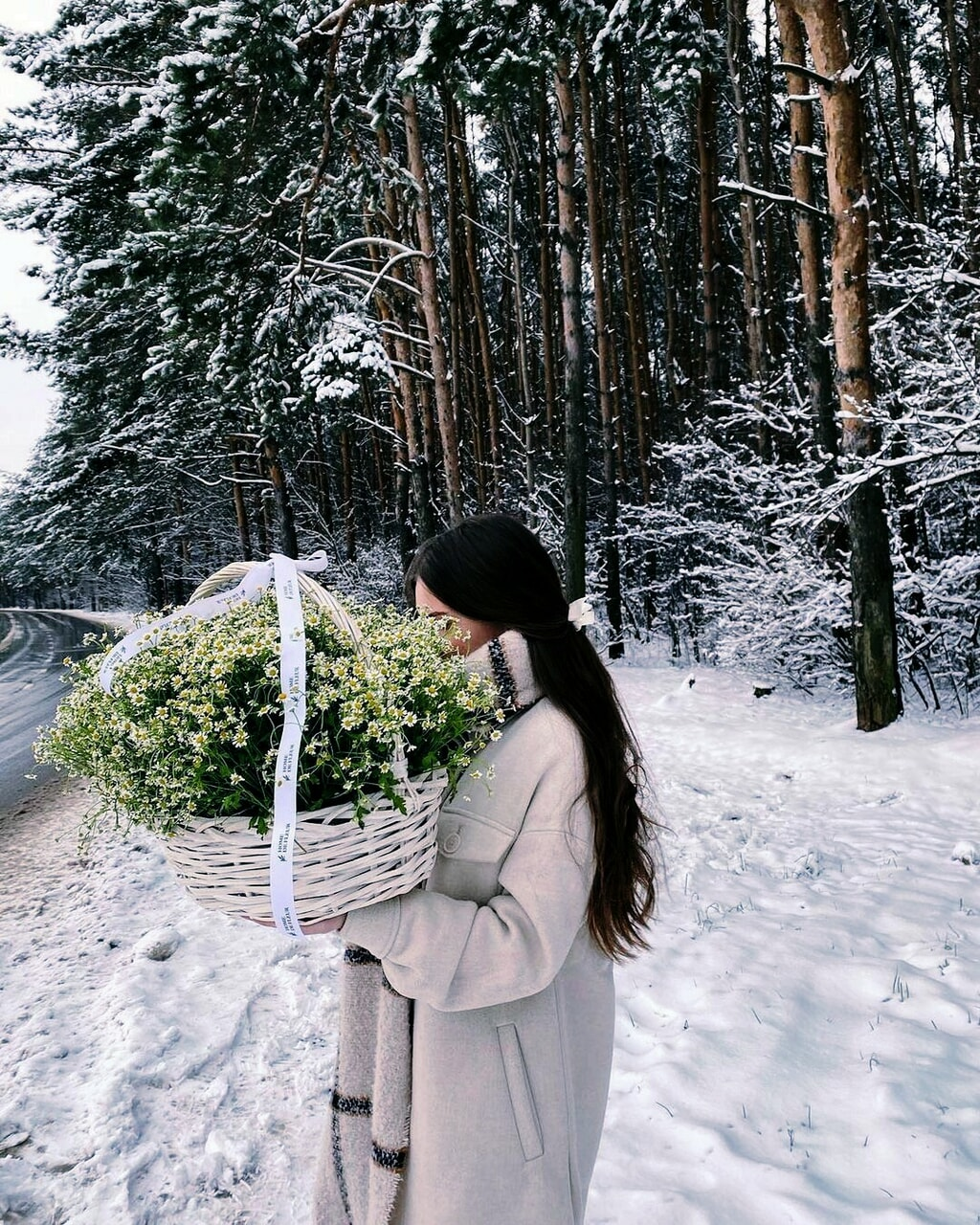 pretty, winter, and flowers image