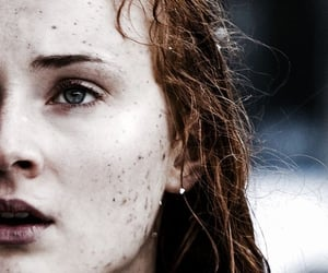 a song of ice and fire, sophie turner, and game of thrones got image