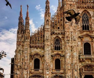 architecture, beautiful places, and cathedral image