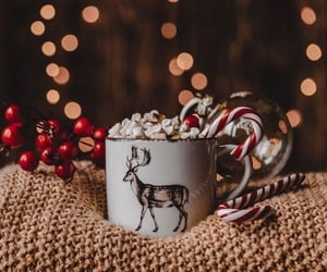 christmas, winter, and hot ​chocolate image