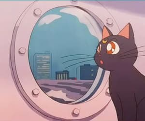 anime, cat, and sailor moon image